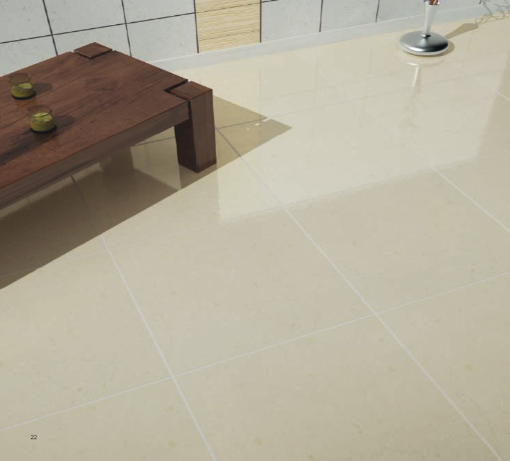 Porcelain Tiles for the Floor and Wall